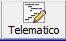 12.pulsante telematico