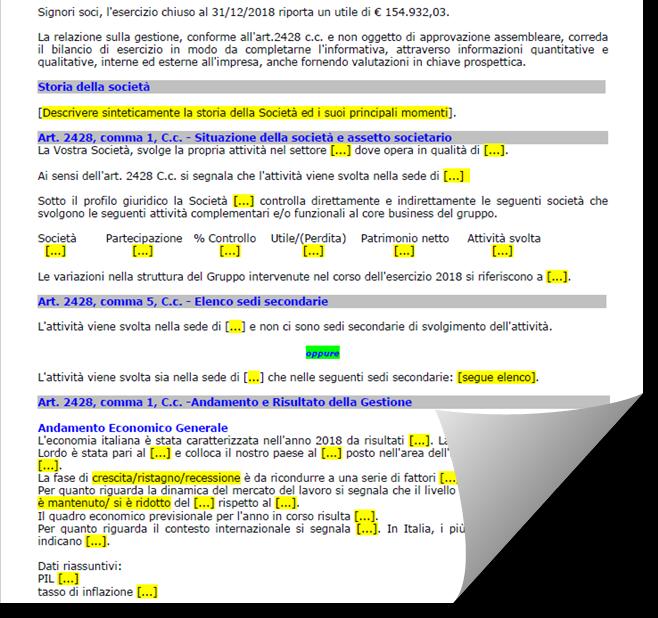 Bilancio 2019: Relazione sulla gestione aggiornata da Confindustria e CNDCEC - 3