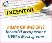 Paghe GB Web: incentivi occupazione NEET e Mezzogiorno