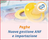 Paghe 2019: nuova gestione ANF e importazione