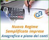 Nuovo Regime Semplificato imprese 2017: anagrafica e piano dei conti