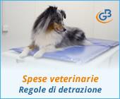 Spese veterinarie 2019: regole di detrazione