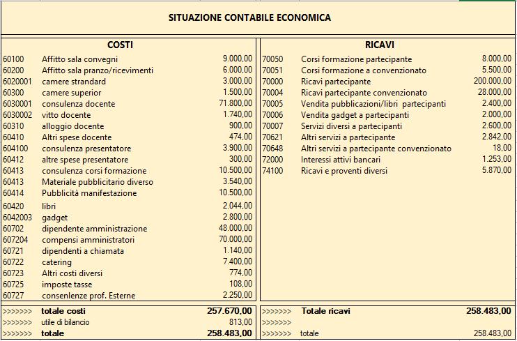 Caso Pratico: ditta di servizi quanti centri di profitto può gestire e come? - Situazione contabile economica