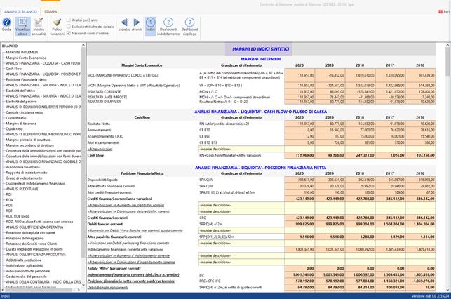 Controllo di Gestione: anticipazioni Analisi di Bilancio Sintetica - Sezione indici