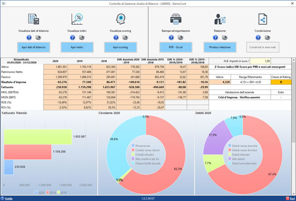 Software Analisi di Bilancio Sintetica - Dashboard