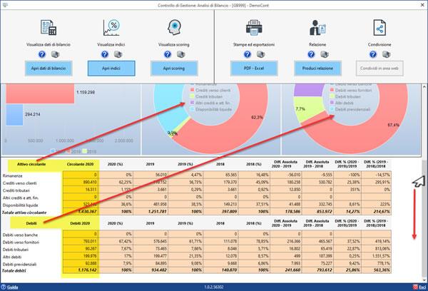 Software Analisi di Bilancio Sintetica - Dettaglio Dashboard